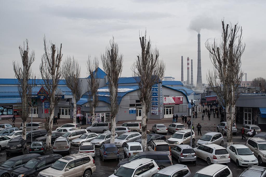 Согласно оценкам властей, в Бишкеке ежегодно выбрасывается в атмосферу 240 тысяч тонн вредных веществ, 180 тысяч тонн из которых приходится на выхлопы автомобилей.